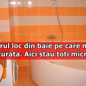 Singurul loc din baie pe care nimeni nu il curata. Aici stau toti microbii
