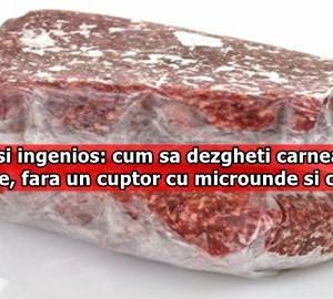 Simplu si ingenios: cum sa dezgheti carnea in doar 5 minute, fara un cuptor cu microunde si curent?