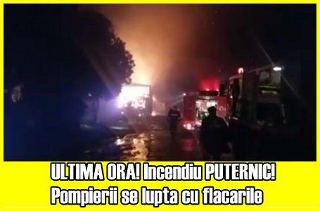 ULTIMA ORA! Incendiu PUTERNIC! Pompierii se lupta cu flacarile