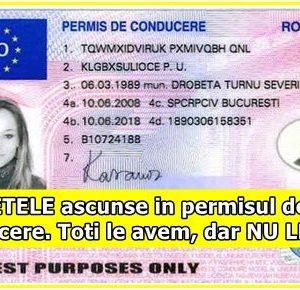 SECRETELE ascunse in permisul de conducere Toti le avem, dar NU LE STIM