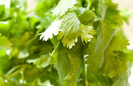 6 plante de combatere a toxinelor