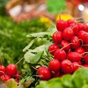 Ridichea, o leguma miraculoasa pentru sanatate