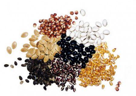 8 seminte bune pentru femeile gravide