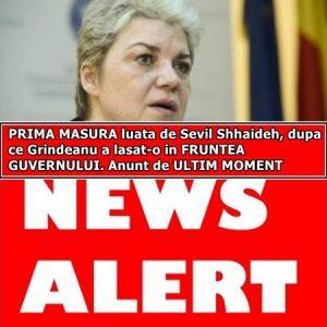 PRIMA MASURA luata de Sevil Shhaideh, dupa ce Grindeanu a lasat-o in FRUNTEA GUVERNULUI. Anunt de ULTIM MOMENT