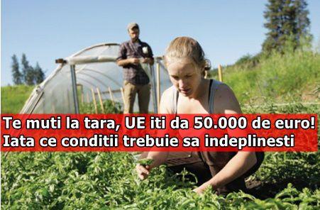 Te muti la tara, UE iti da 50.000 de euro! Iata ce conditii trebuie sa indeplinesti